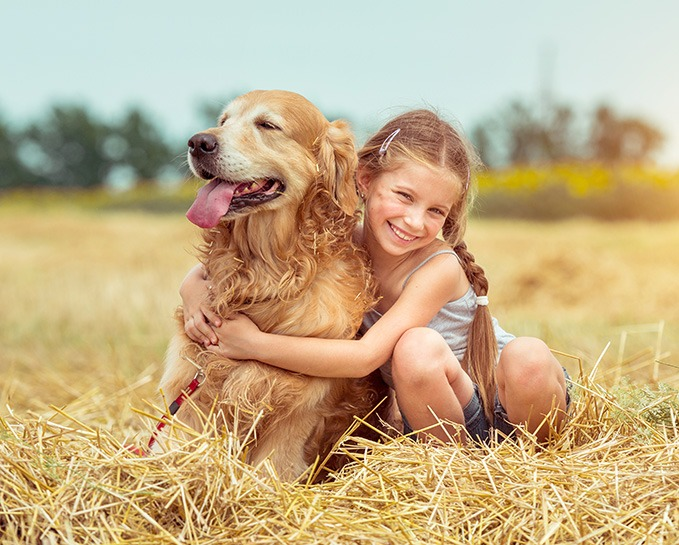 The Golden Retriever With Kid