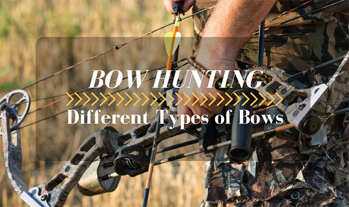 Different Types of Bows