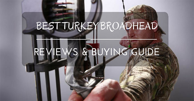 Best Turkey Broadhead