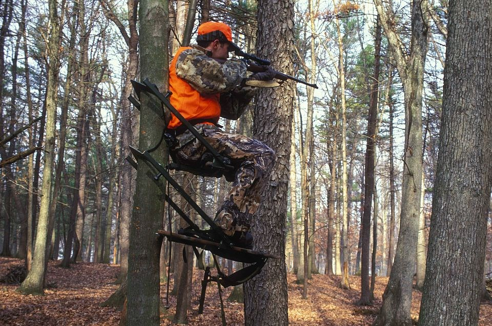 Why buy an ACOG scope for your rifle? For starters, it'll boost your accuracy when you're hunting or target shooting. Photo of hunter in tree.