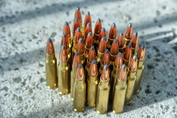 0.308 is the most popular hunting cartridge