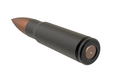 referred to as the 0.308 Winchester