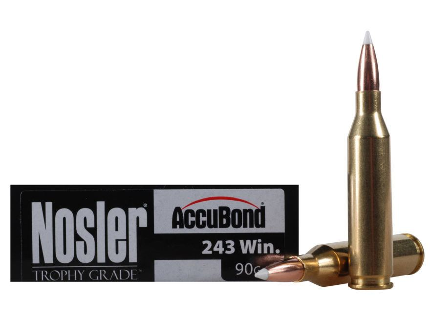 product photo of 243 winchester cartridge
