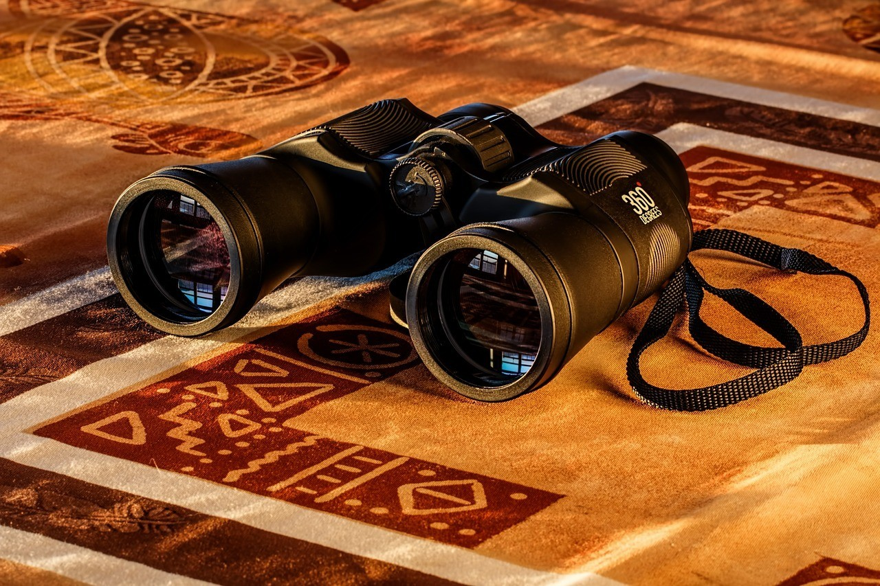 Best Binoculars for Hunting: Top 5 Picks of the Year