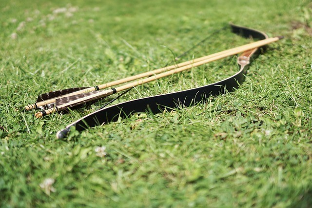 a composite bow and two arrows lying on the green lawn