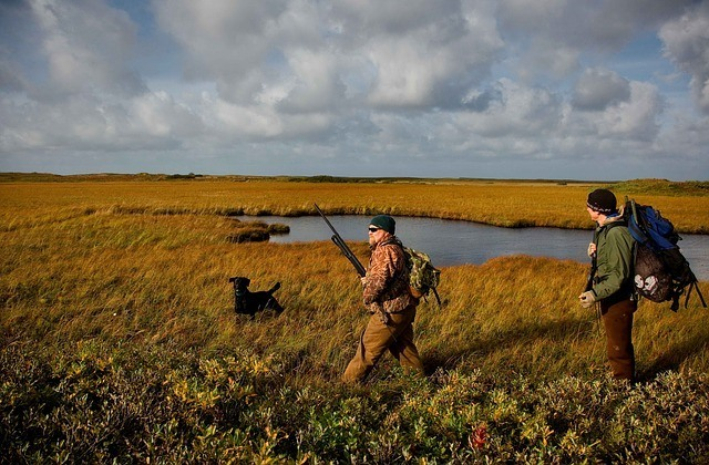 two men and a dog walking in a field to hunt