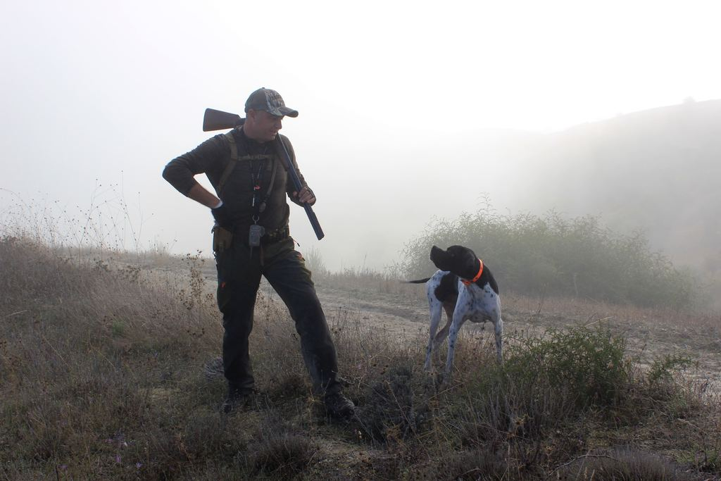 a man with a dog in the outdoor for hunting