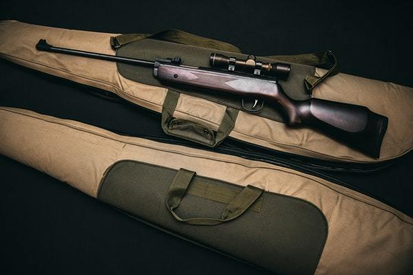 rifle and 2 rifle case